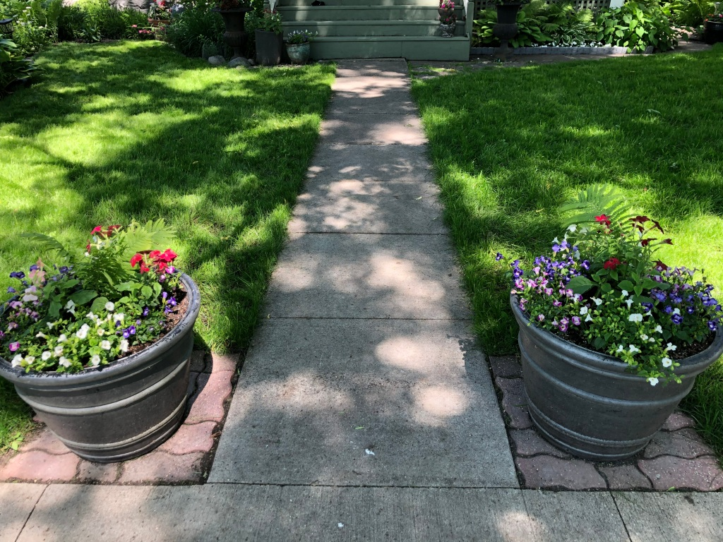Photo of a lawn with planters on either side of a sidewalk.